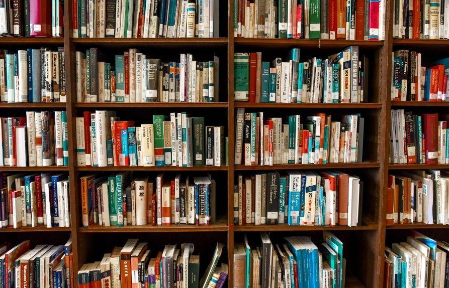 Study at La Trobe University Bendigo in Term 5 (September) 2020
